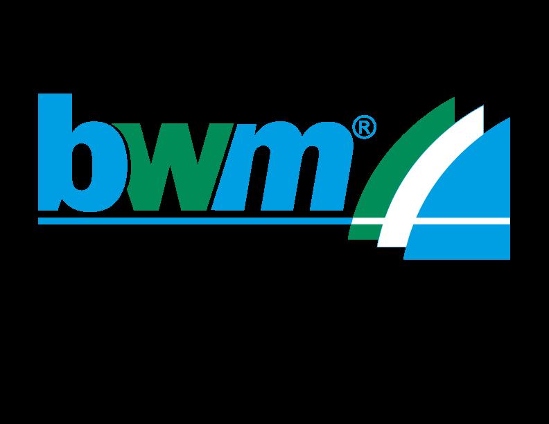 Bwm Logo Big